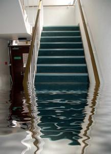 Flooding Damage Repair