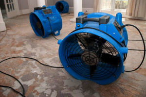 2 Reasons To Hire A Dehumidifier Instead Of Buying